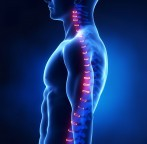 Degenerative Disc Disease And The Myth Of Worn Out Spinal Discs